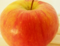 Apfel close